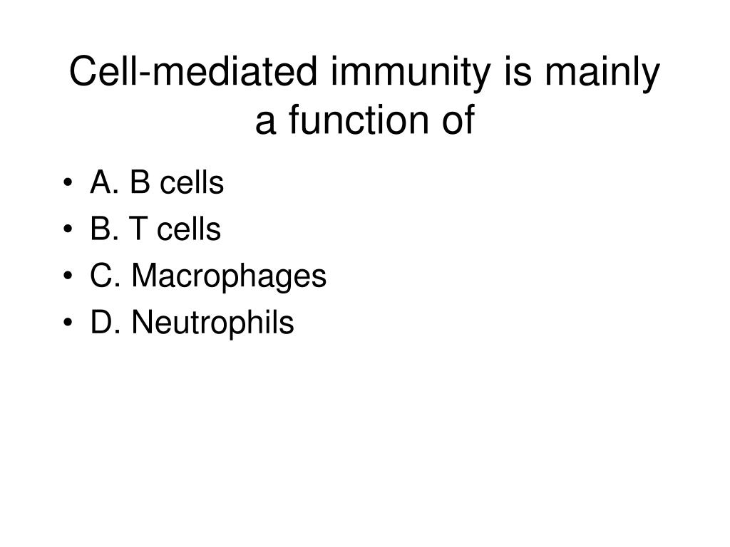 Cell-mediated immunity is mainly a function of