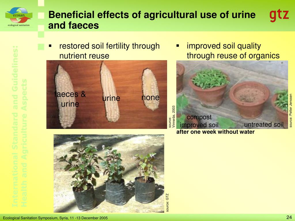 improved soil quality through reuse of organics