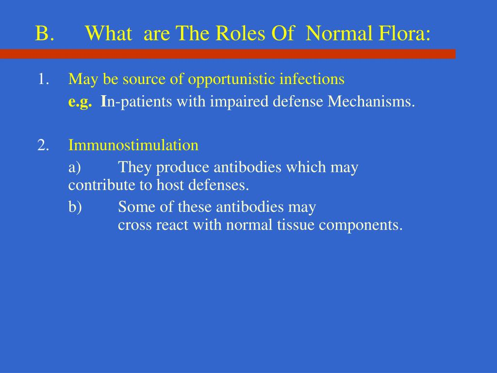 B.What  are The Roles Of  Normal Flora: