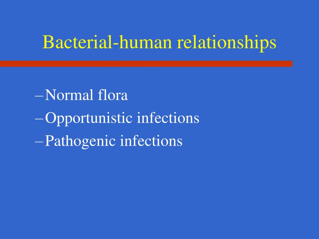 Bacterial-human relationships