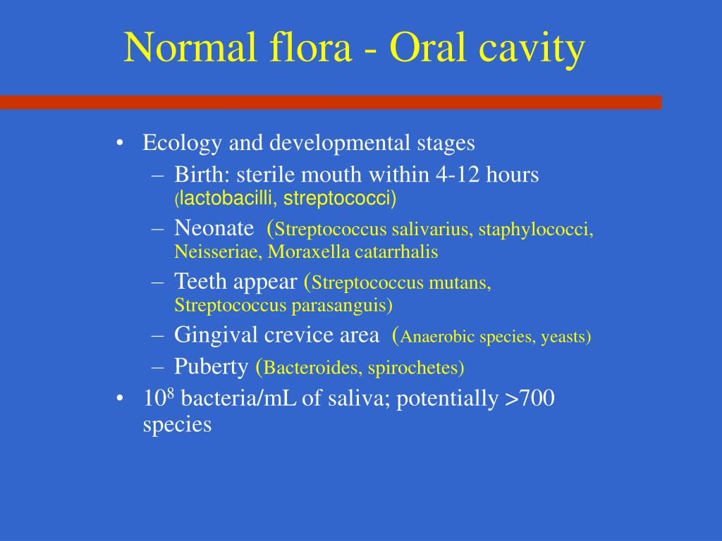 Normal flora - Oral cavity
