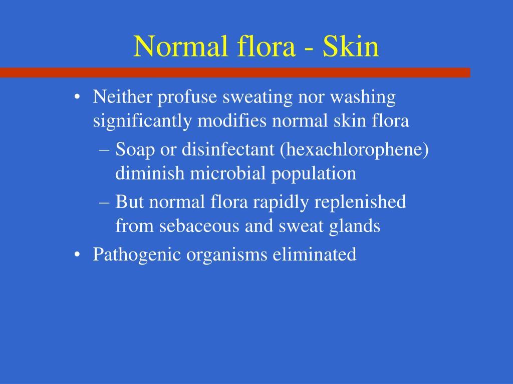 Normal flora - Skin
