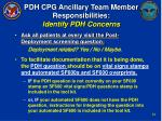 pdh cpg ancillary team member responsibilities identify pdh concerns
