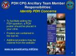 pdh cpg ancillary team member responsibilities identify pdh concerns25