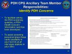 pdh cpg ancillary team member responsibilities identify pdh concerns27