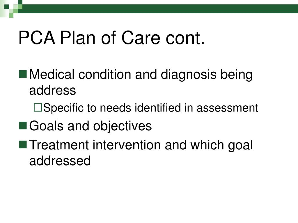PCA Plan of Care cont.