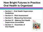 how bright futures in practice oral health is organized