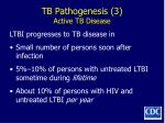 tb pathogenesis 3 active tb disease