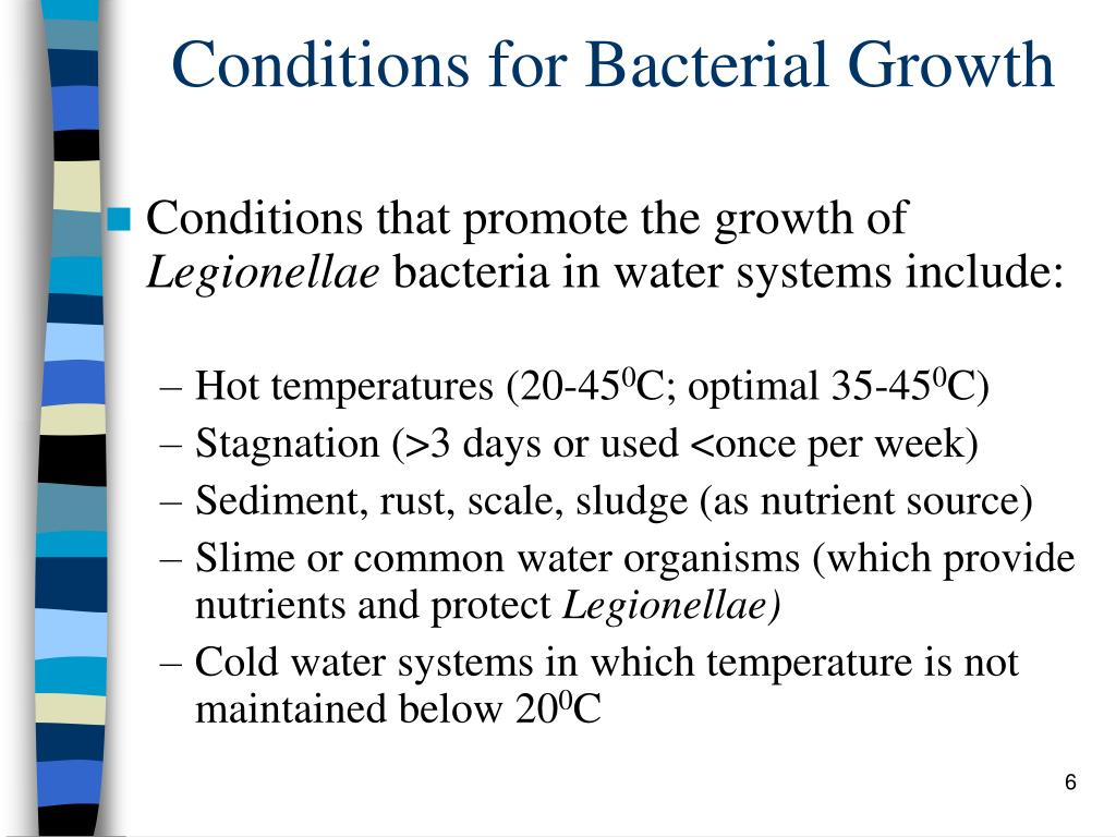 Conditions for Bacterial Growth