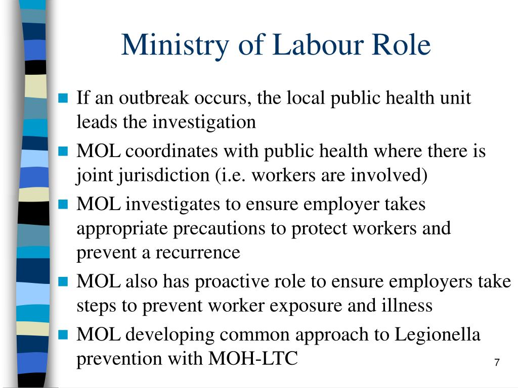 Ministry of Labour Role