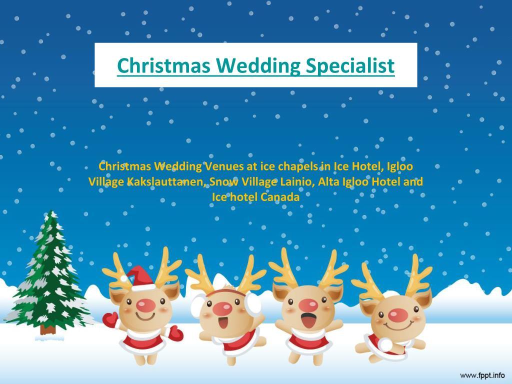 christmas wedding specialist
