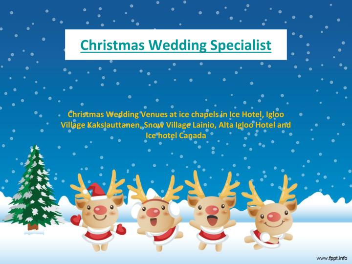 Christmas wedding specialist