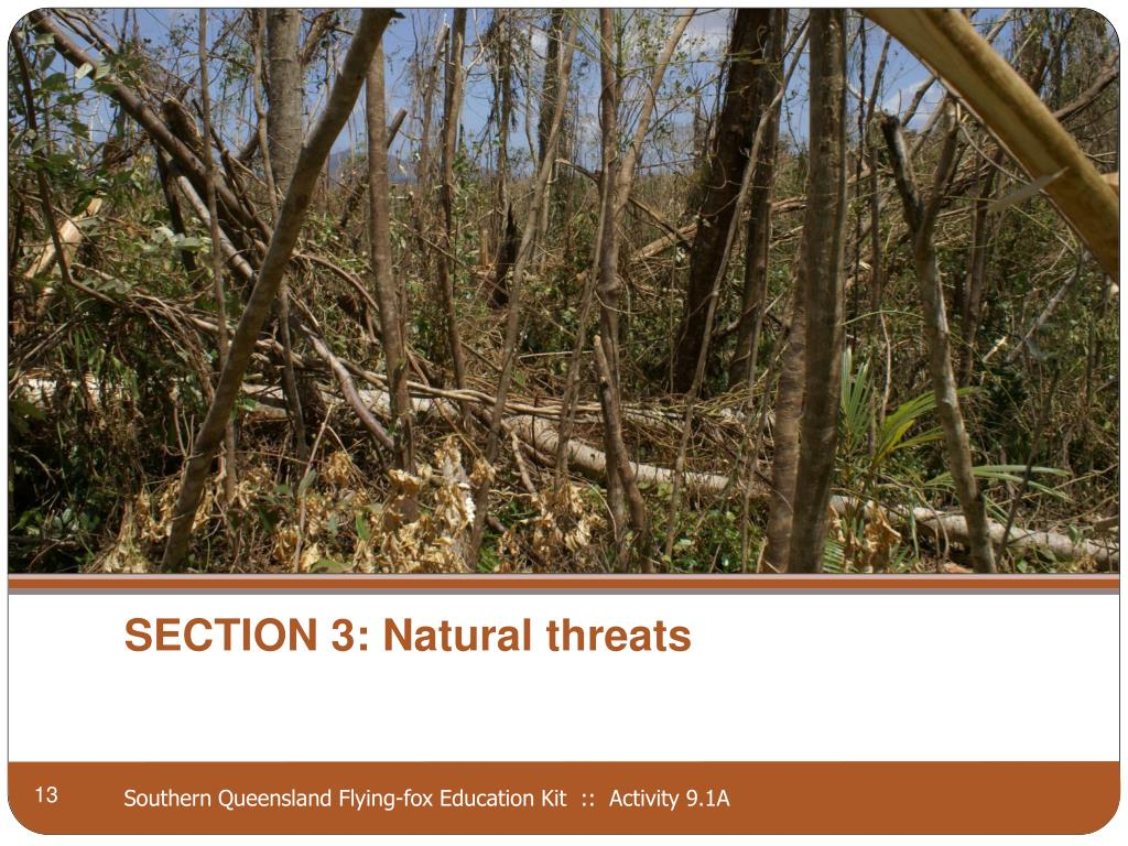 SECTION 3: Natural threats
