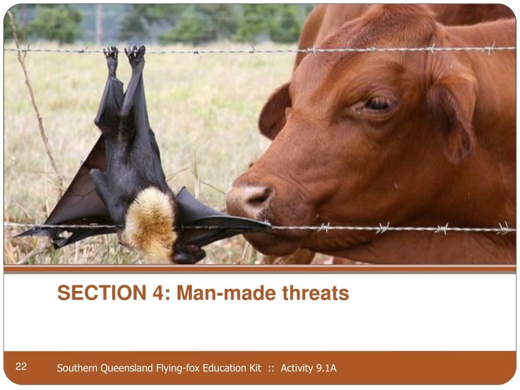 SECTION 4: Man-made threats