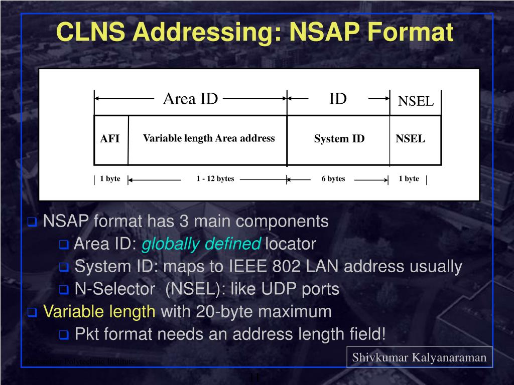 CLNS Addressing: NSAP Format