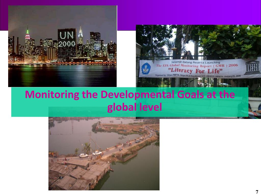 Monitoring the Developmental Goals at the global level