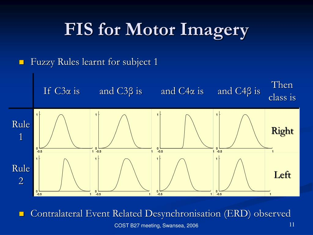 FIS for Motor Imagery