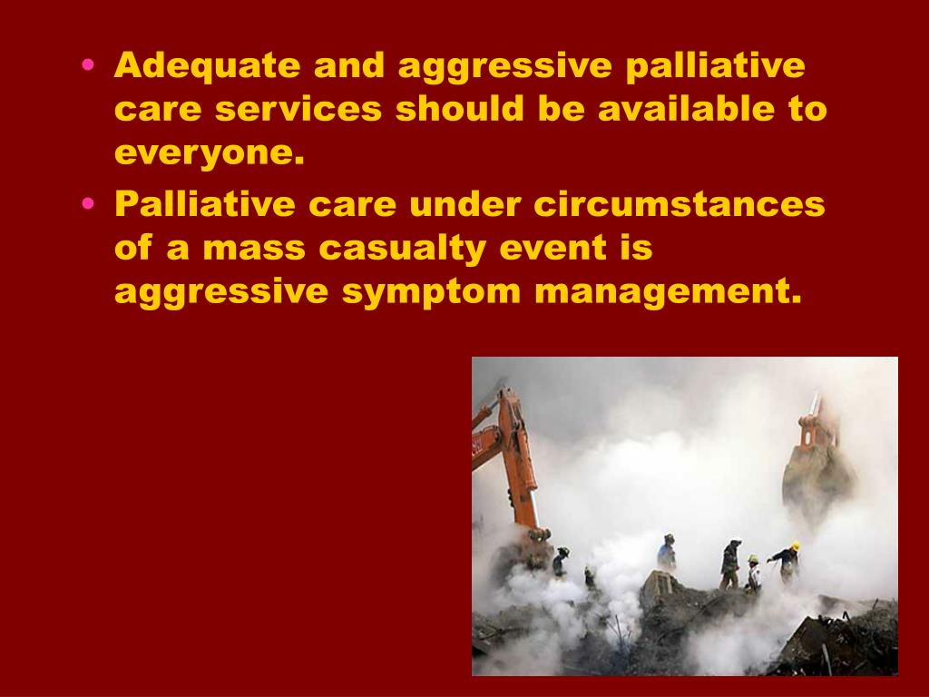 Adequate and aggressive palliative care services should be available to everyone.