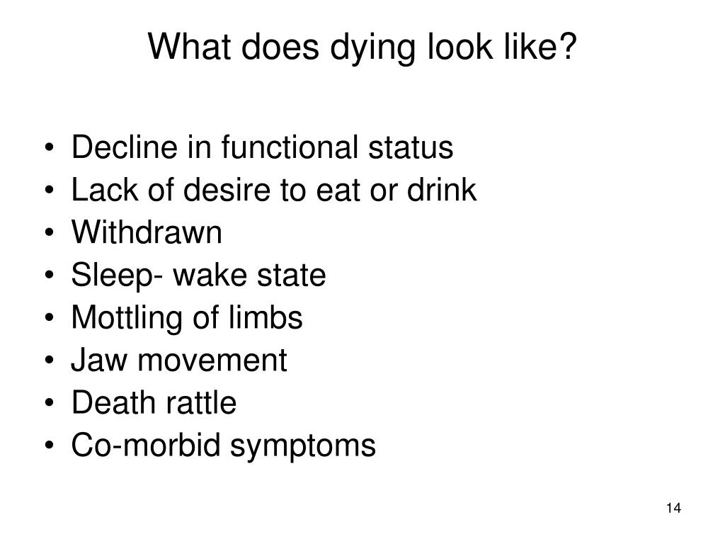 What does dying look like?