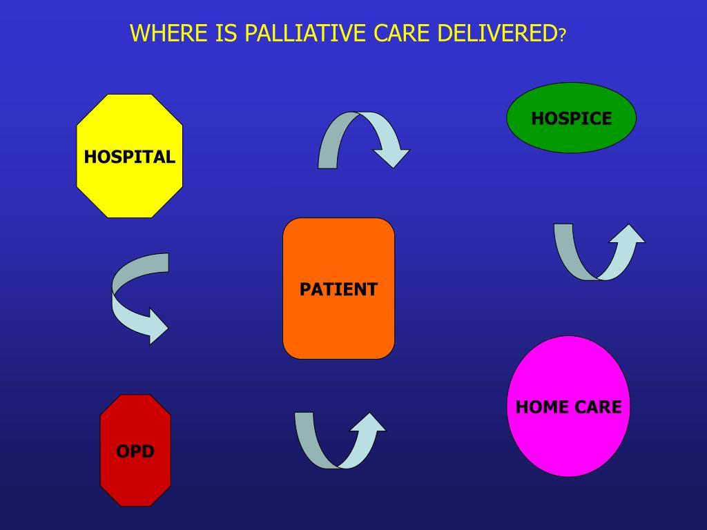 WHERE IS PALLIATIVE CARE DELIVERED