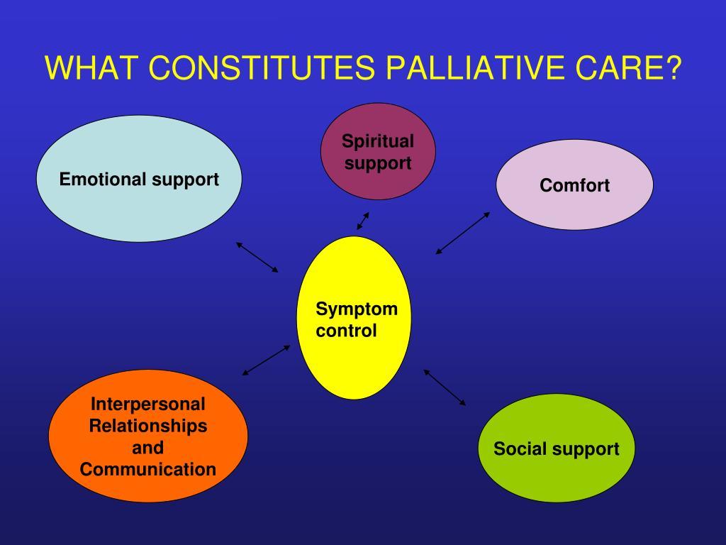 WHAT CONSTITUTES PALLIATIVE CARE?