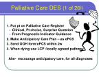 palliative care des 1 of 26