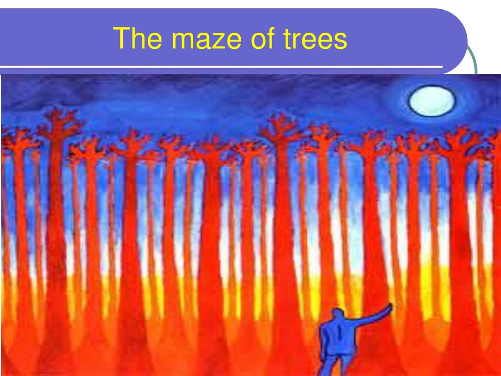 The maze of trees