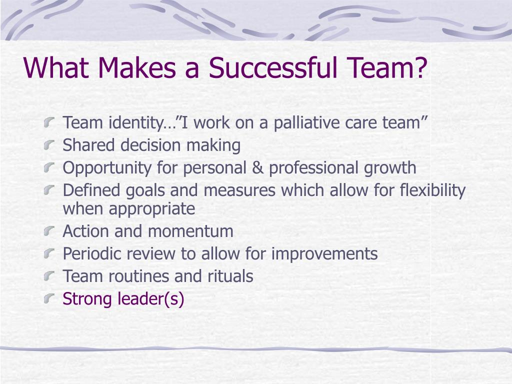 What Makes a Successful Team?