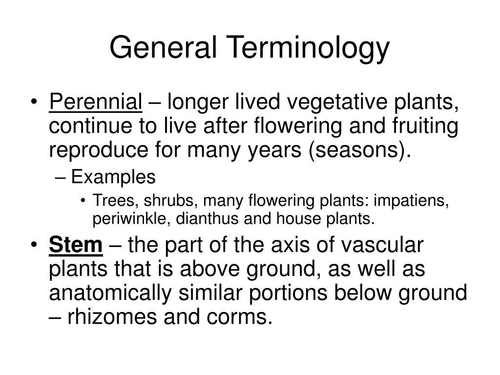 General Terminology