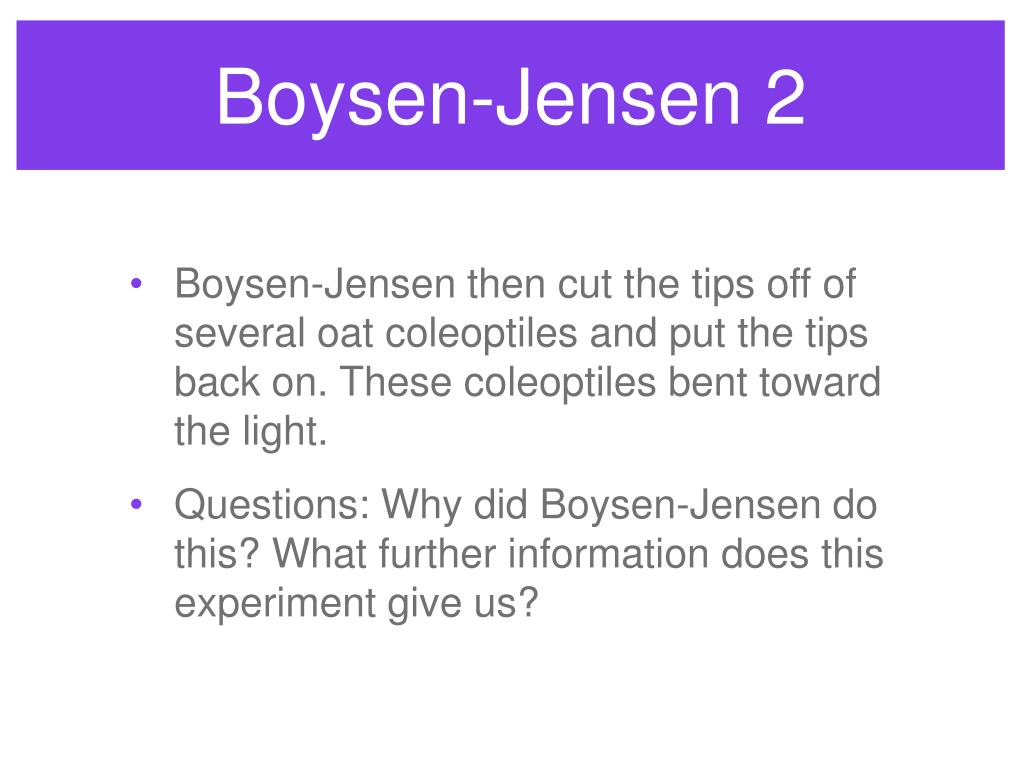 Boysen-Jensen 2