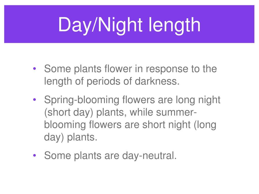Day/Night length