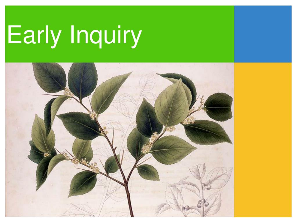 Early Inquiry