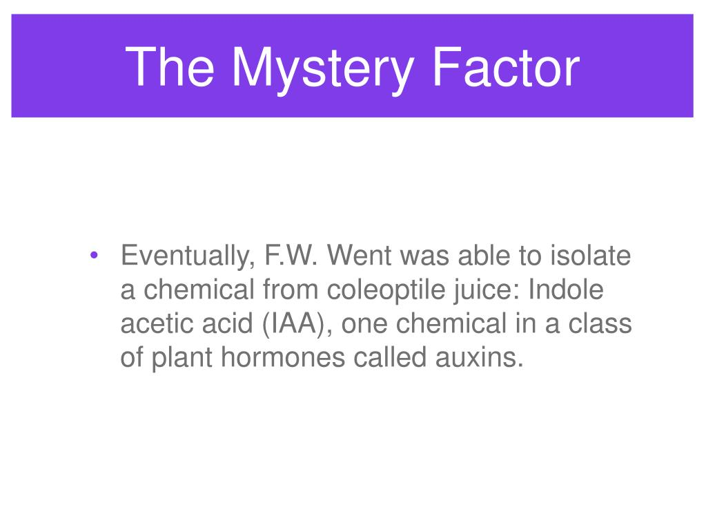 The Mystery Factor