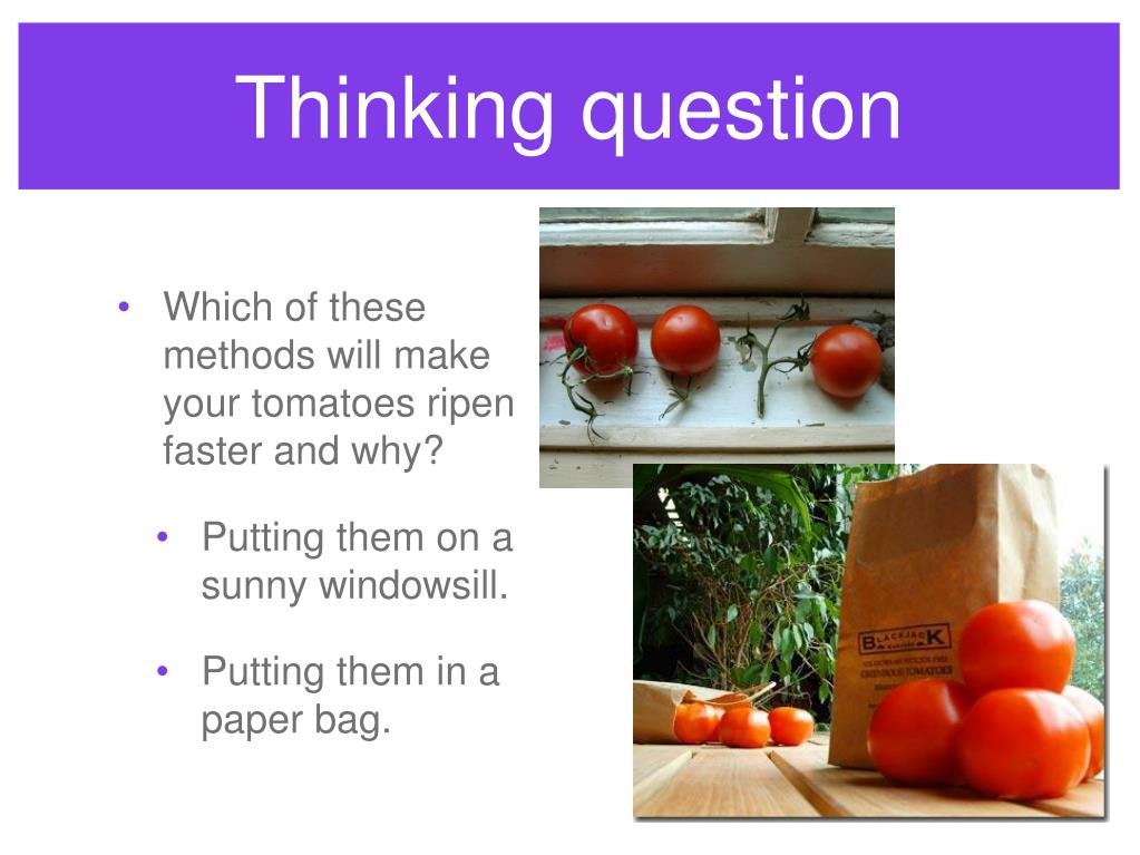 Thinking question