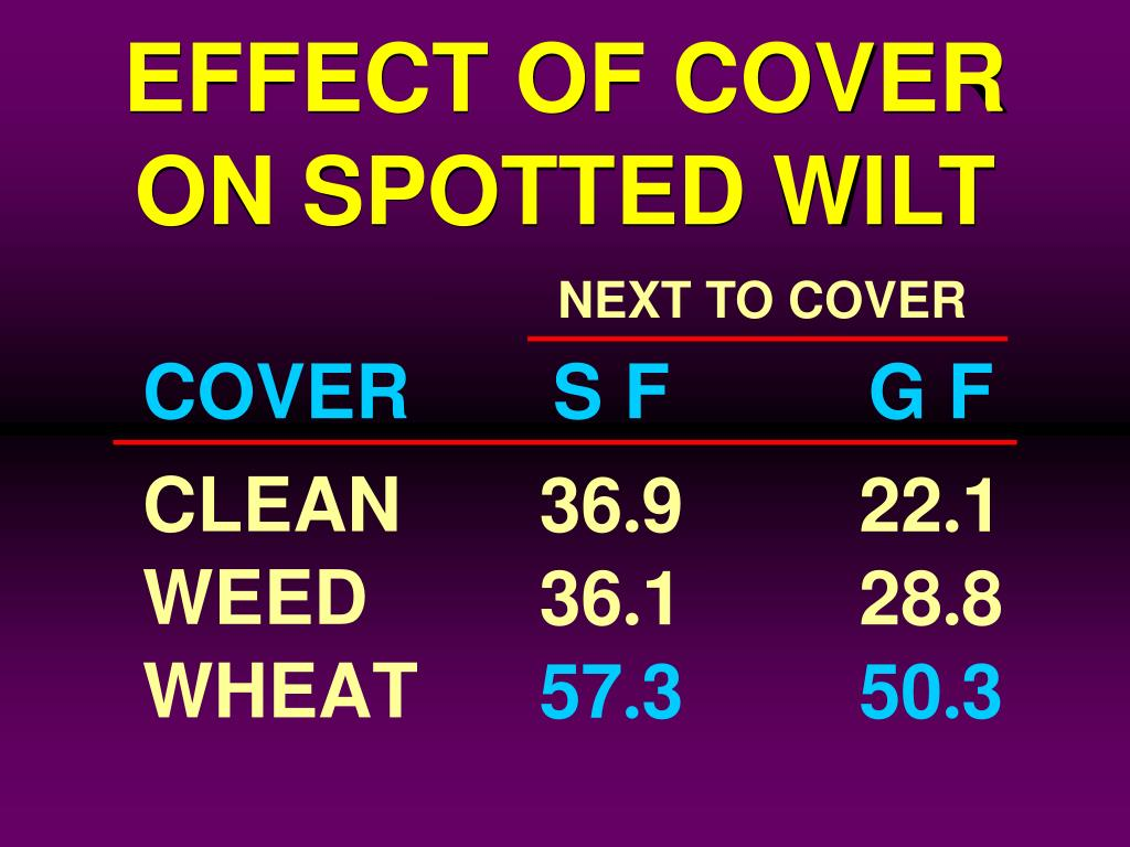 EFFECT OF COVER