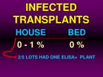 infected transplants38
