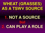 wheat grasses as a tswv source25