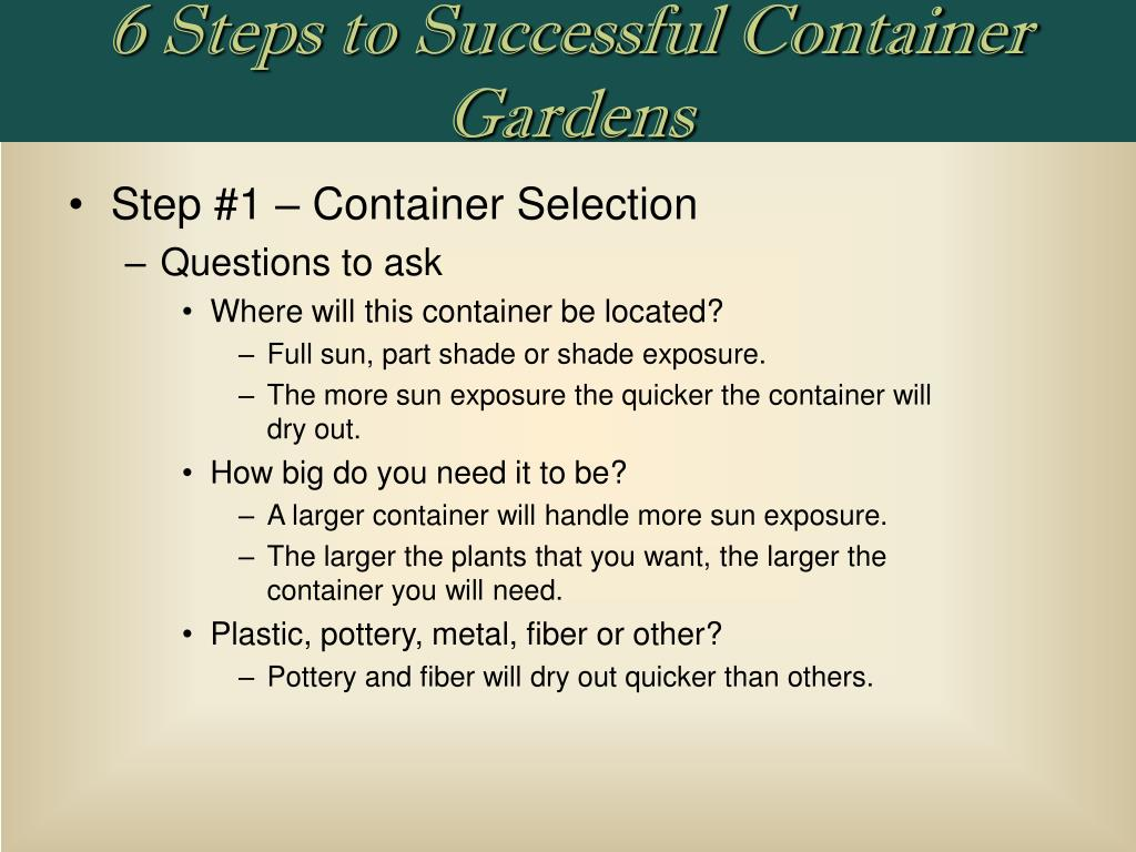 6 Steps to Successful Container Gardens
