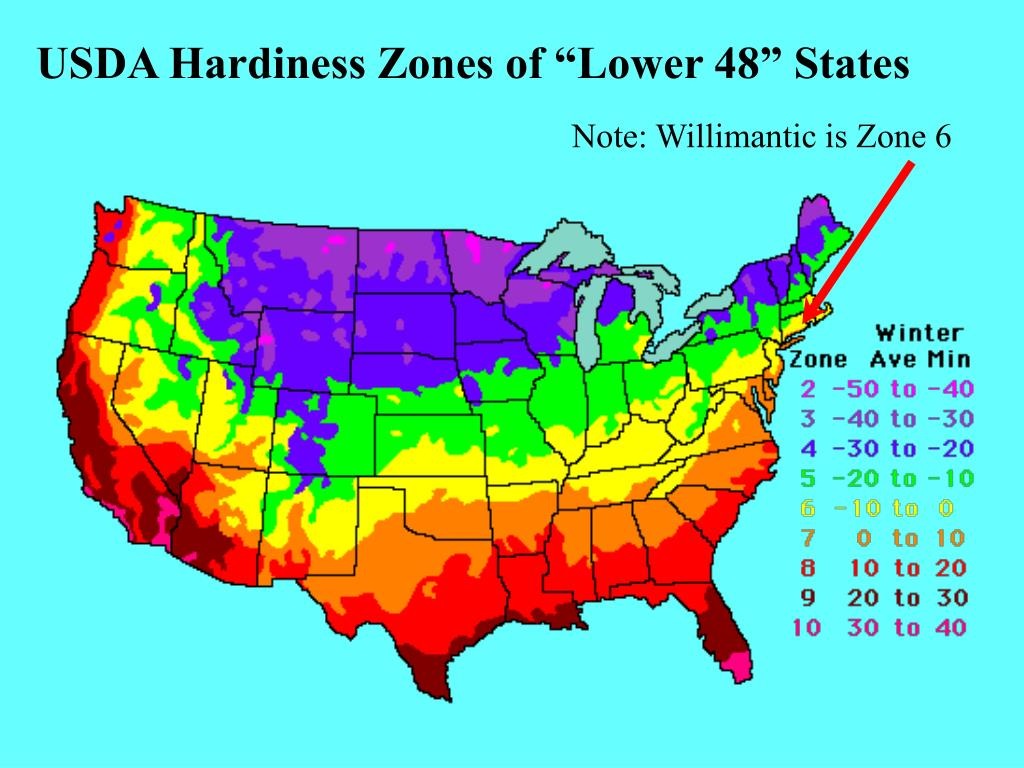 "USDA Hardiness Zones of ""Lower 48"" States"