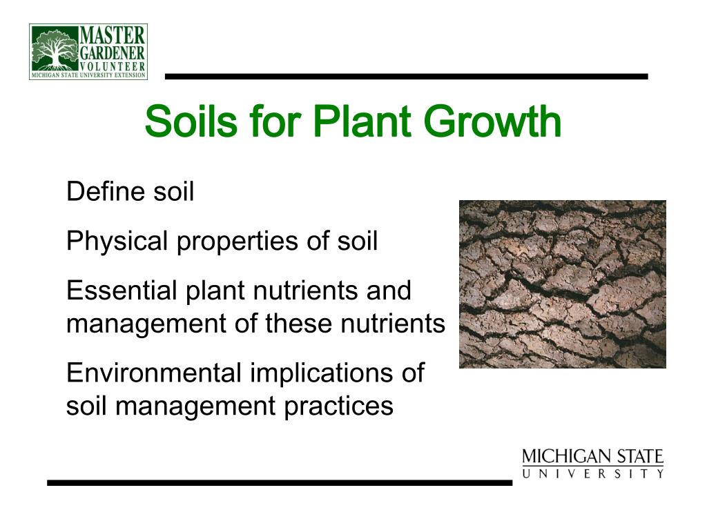 Soils for Plant Growth