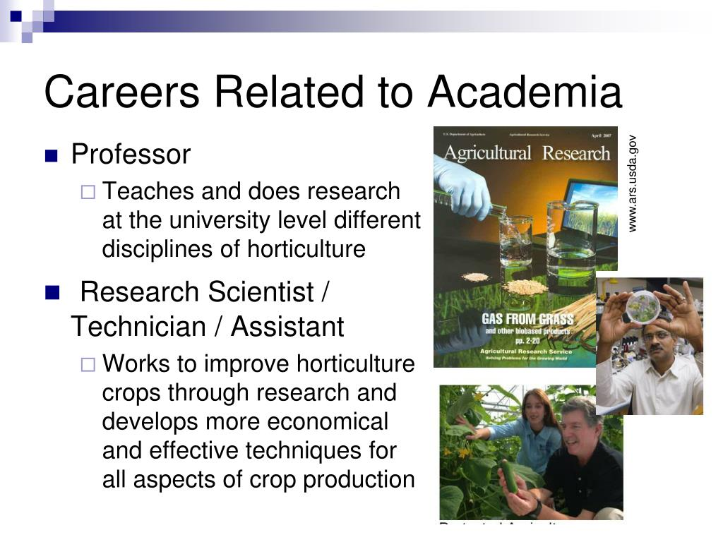 Careers Related to Academia