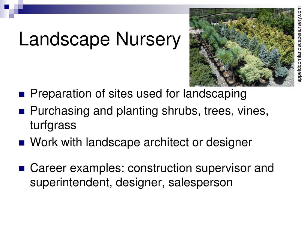 Landscape Nursery