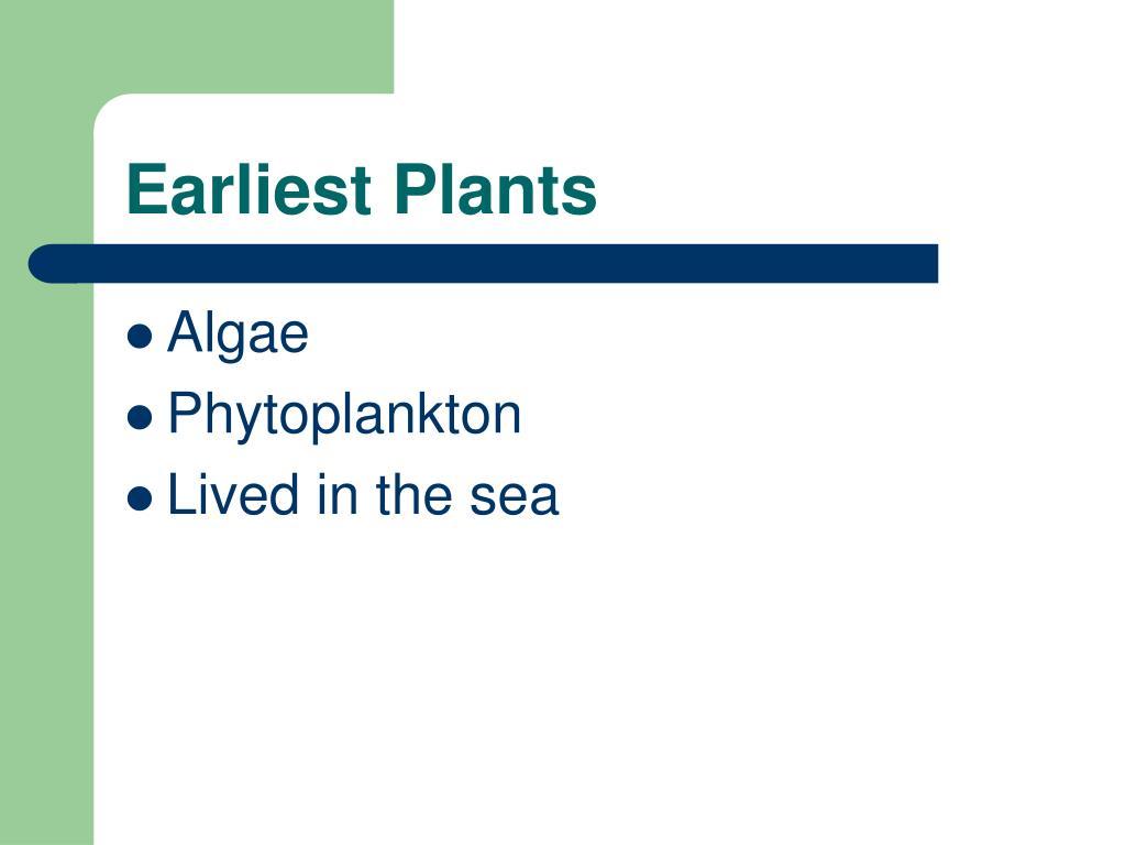 Earliest Plants