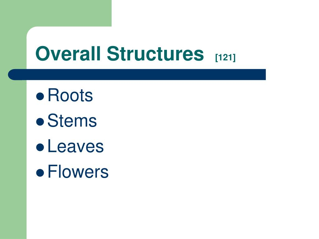 Overall Structures