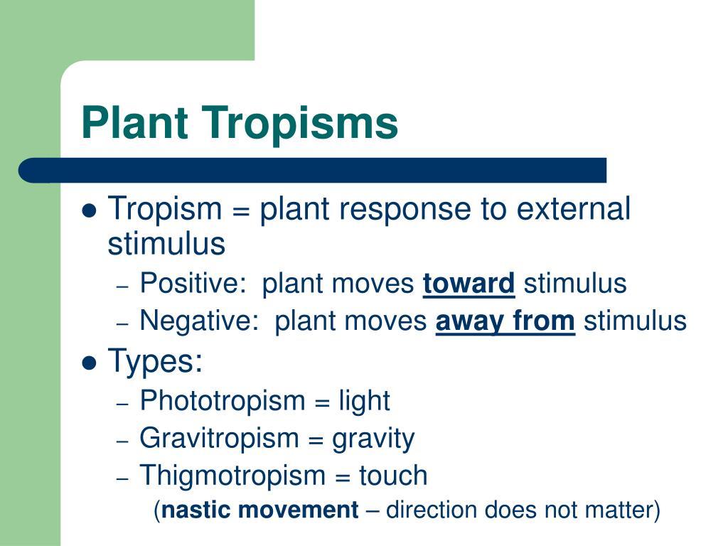 Plant Tropisms