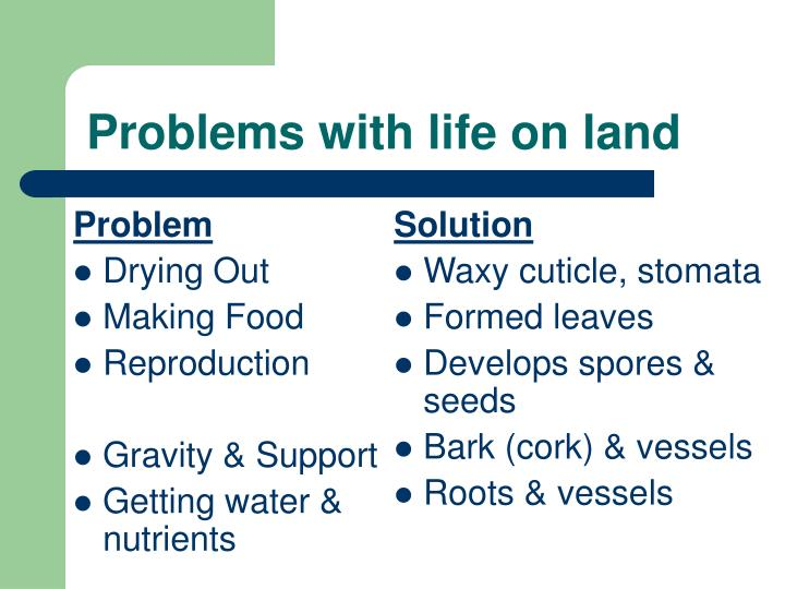 Problems with life on land