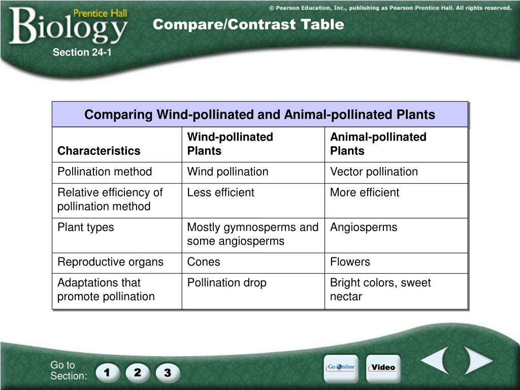 Compare/Contrast Table