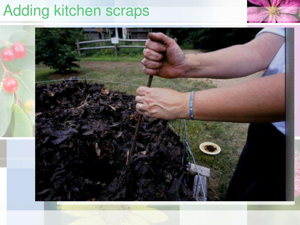 Adding kitchen scraps
