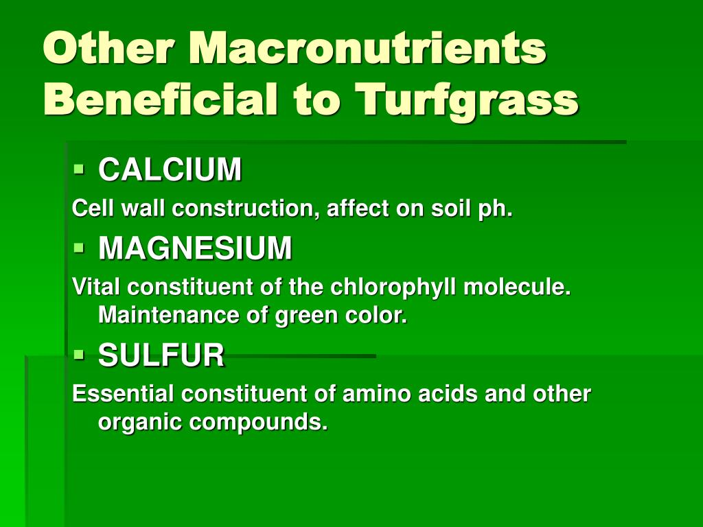 Other Macronutrients Beneficial to Turfgrass
