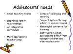 adolescents needs